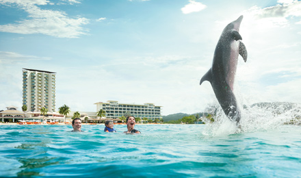 Discover Jamaica's Natural Beauty and Cultural Gems