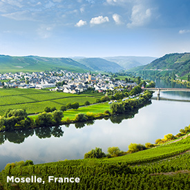 Enchanting Moselle