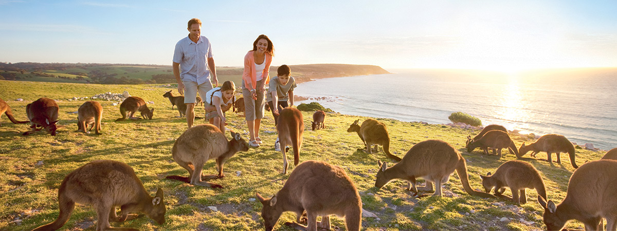 5 Reasons to Travel to Australia