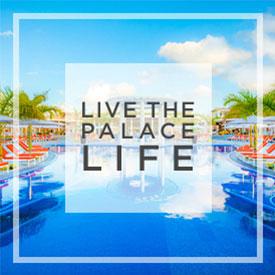 Live a Palace Life