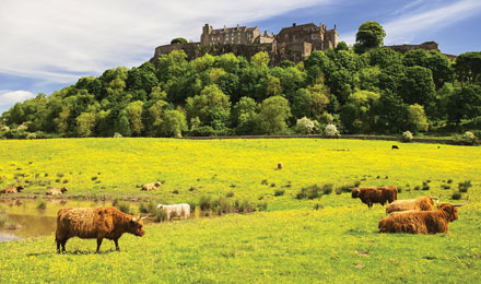 Save 5% on 2020 Escorted Tours of Scotland