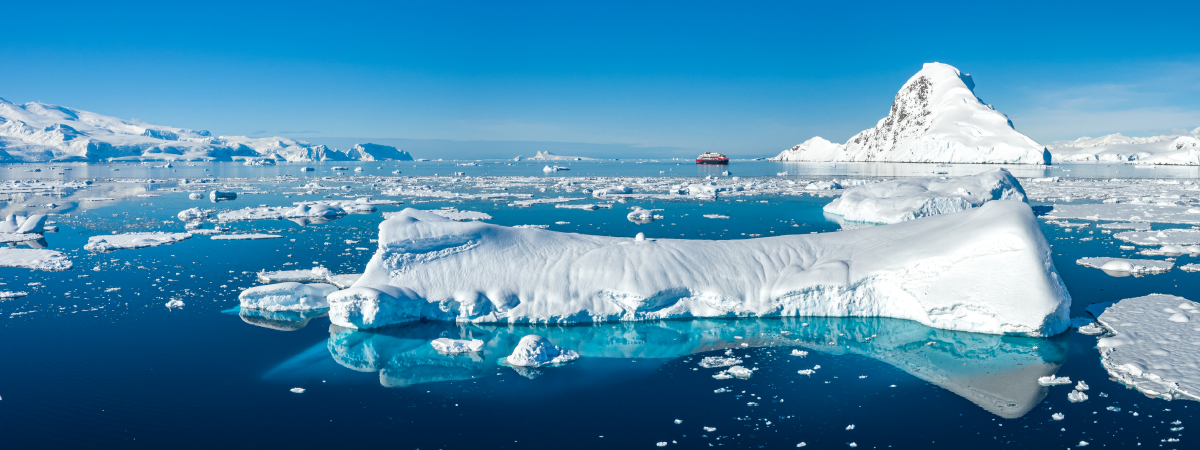 SAVE WHEN YOU BOOK WITH OUR AGENCY   Buy One Get One Half Off*  on select Antarctica, Norway and Alaska sailings.