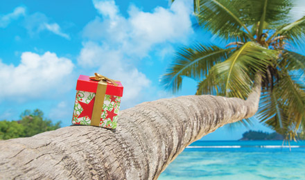 Holiday Packages and Cruises!