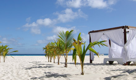 All-Inclusive Cancun Vacations with Pleasant!