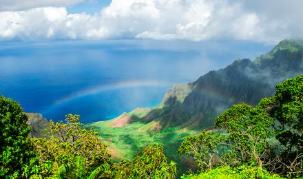 Enjoy Hawaii in Winter Escapes!